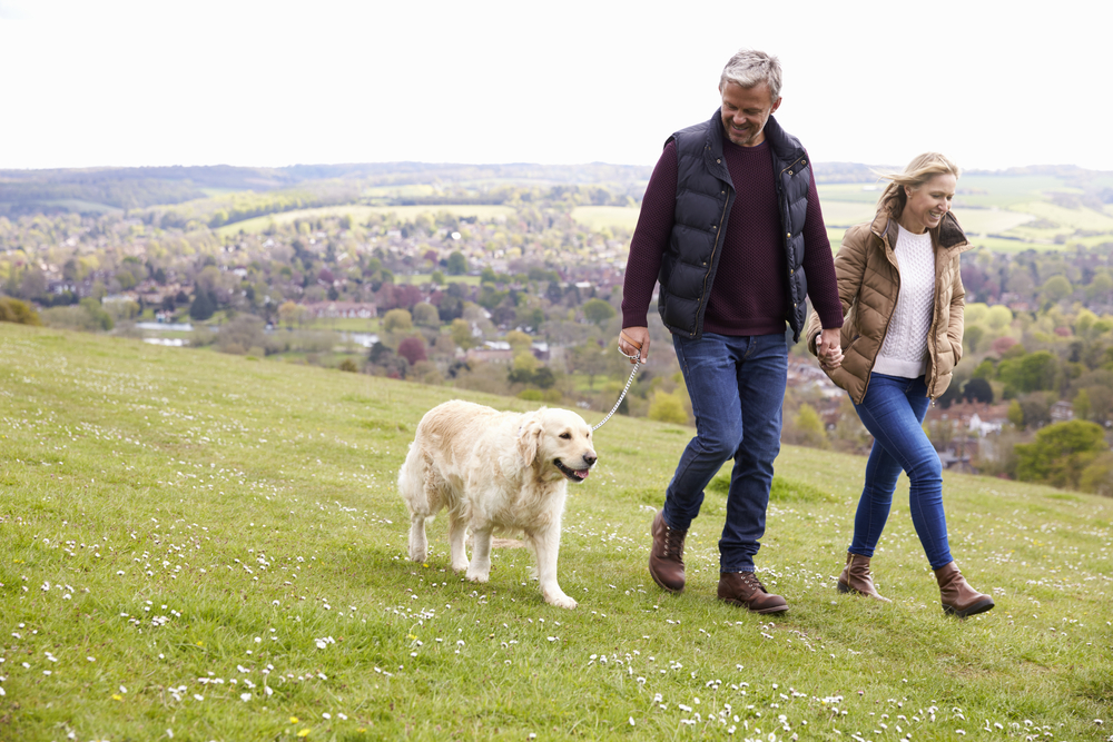 Couple walking golden retriever on sloping grassy hill overlooking small town